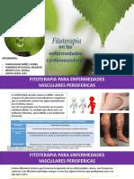 01 Fitoterapia Cardiovascular
