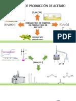 Cinética de Producción de Acetato