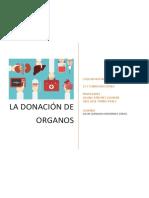 Ensayo de Donacion de Organos David leonardo