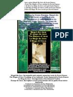 Despre Cartea Magul Din Java