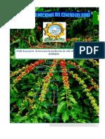 Perfil de proyecto de producción de café soluble ORGANICO EXPRESS