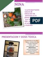 estricnina-140913192155-phpapp01 (1)