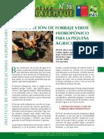 Info 56 Forraje Verde Hidropónico Para La Pequeña Agricultura