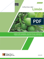 boletin-informe-limon.pdf