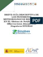 breve_guia_descriptiva_SINOBAS.pdf