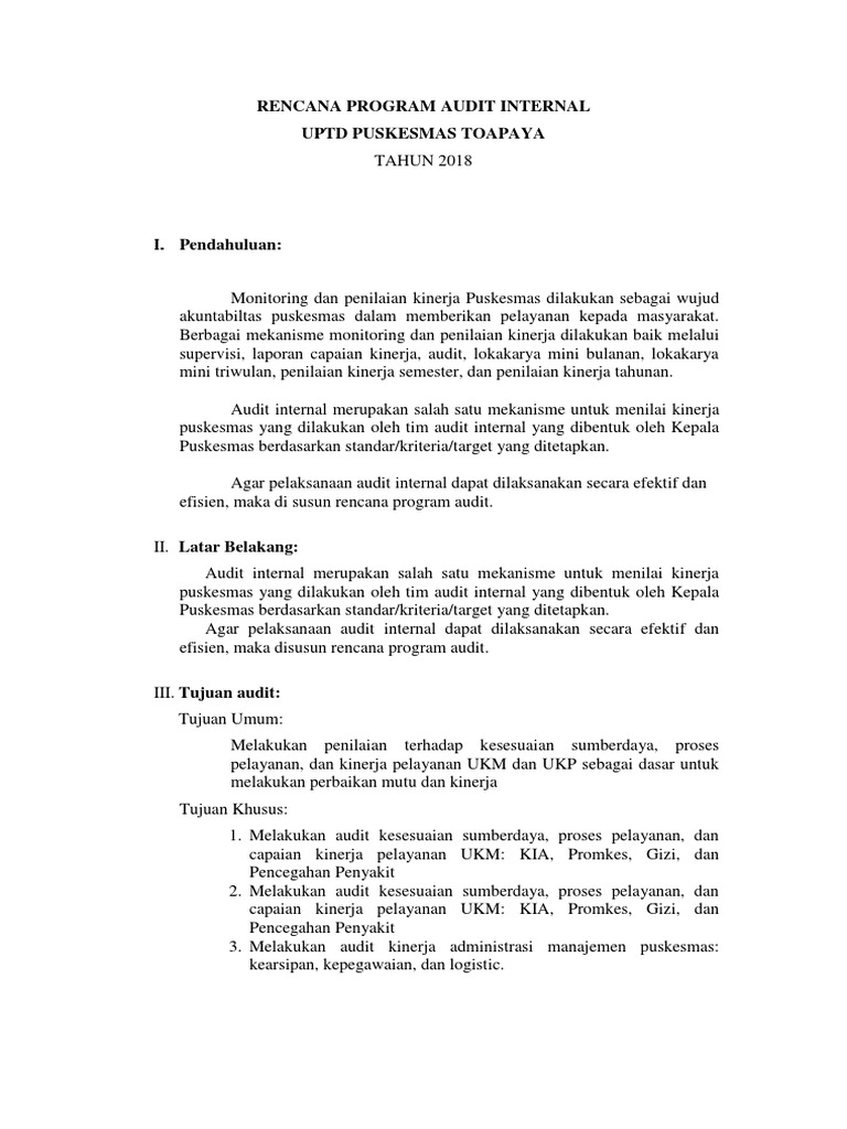 Program Kerja Audit Internal Puskesmas Ilmusosial Id