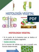 Clase 10 Histologia
