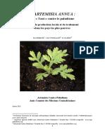 La Culture de l'Artemisia Annua