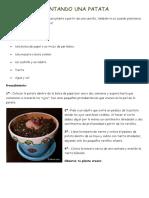 Maleta Viajera - Plantando una patata.pdf