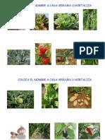 Maleta Viajera - Nombre de las hortalizas.pdf