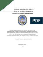 315632404 Carmen Tenorio Cecilia Carolina Docx