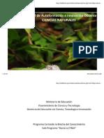 fisibach.pdf