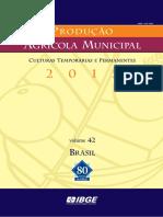 Aula 14 IBGE Pam 2015 v42 Br