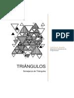 Informe-CastilloAmarilis