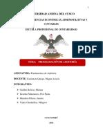 Programación de Auditoría PDF