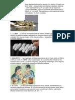 10 TIPOS DE DROGAS.docx