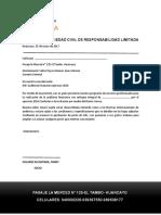 SOCIEDAD-DE-AUDITORIA.docx