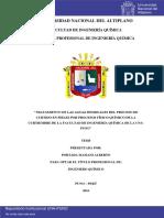 PUNO Portada_Mamani_Alberto.pdf