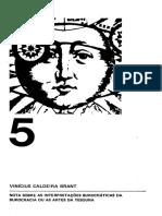 342997740-BRANT-Vinicius-Caldeira-Nota-sobre-as-interpretacoes-burocraticas-da-burocracia-ou-as-artes-da-tesoura-pdf.pdf