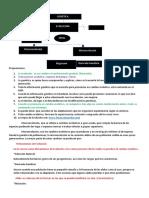 Documento (1) (3).docx