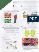 02. La Reproduccion de Moneras a Plantas Taller #2