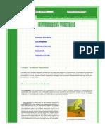 Www Botanical Online Com Lasplantasmovimientosvegetales Htm Oyq5klot