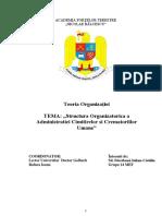 Teoria Organizatiei Accu Proiect