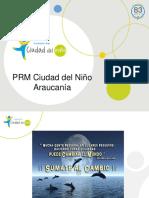 Presentación PRM ARAUCANIA Freire Octubre 2017 (1)
