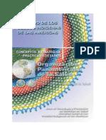 53 SPI Conceptos Estrategias.pdf(1)
