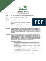 Informe Preliminar SOs.docx