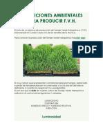 Condiciones Ambientales Para Producir Fvh