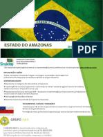 Apresentação Iner Amazonas.pdf