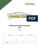 Programa-Prevencion-de-Riesgos COPAL CARS.doc