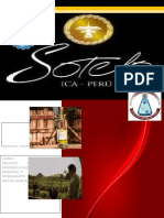 Informe Sotelo