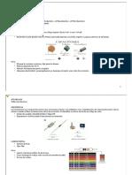 Curso Bazz Fuss.pdf