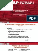 4 Declaraciones y Tratados Derechos Humanos (1)
