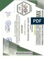 SKMBT_C45018060613210