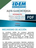 Alfa Glococidasa