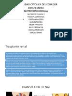 Trasplante Renal