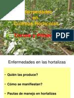Enfermedades_de_Tomate_Pimiento.ppt