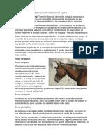 Diagnósticos Diferenciales Para Dermatomicosis Equina