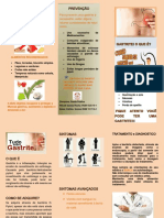 Folder Gastrite