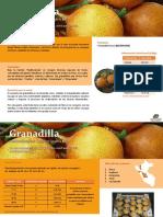 Ficha-granadilla Sierra y Selva Exportadora