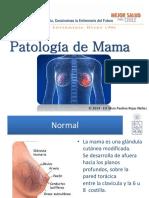 2 Atención Patologia Mama OK_(2)