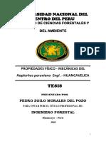 Morales Del Pozo