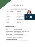 Curriculum Vitae Maribel Guzman