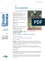 Circular135.pdf