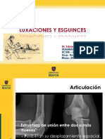 luxacionesyesguinces2011-110404210336-phpapp02.pdf