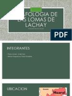 Lomas de Lachay Ppt-1