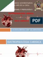 5.3 Electrofisiologia Cardiaca y Ciclo Cardiaco 1